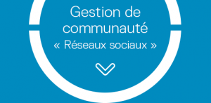 categorie-reseaux-sociaux-sim5