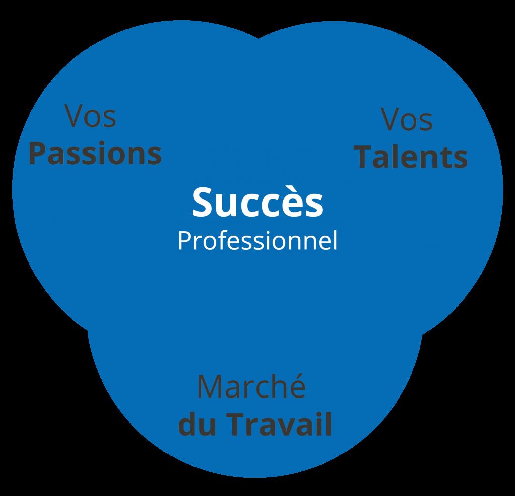 succès professionnel talents passions sim5